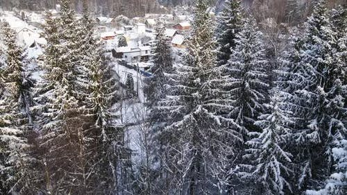 Beatiful Revealing of Small Snowy Village Behind Winter Forest