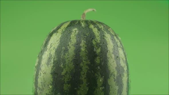 Watermelon On Green Background Studio