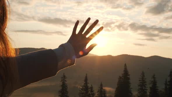 Thumbnail for the Girl Closes the Palm of the Sun on Nature