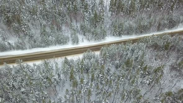 Thumbnail for Winter Forest Country Road