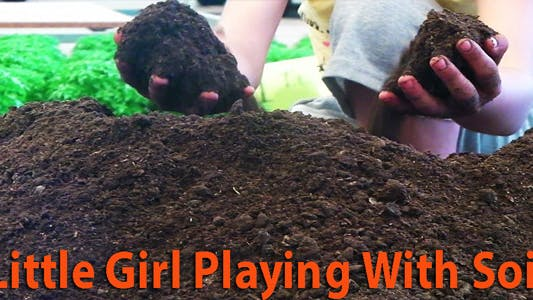 Thumbnail for Little Girl Playing With Soil