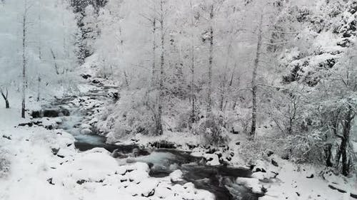 River in the Winter Snow Forest in the Mountains