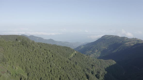 Thumbnail for Trabzon City Forest And Mountains Aerial View 6
