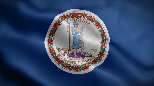 Thumbnail for Virginia State Flag Blowing In Wind