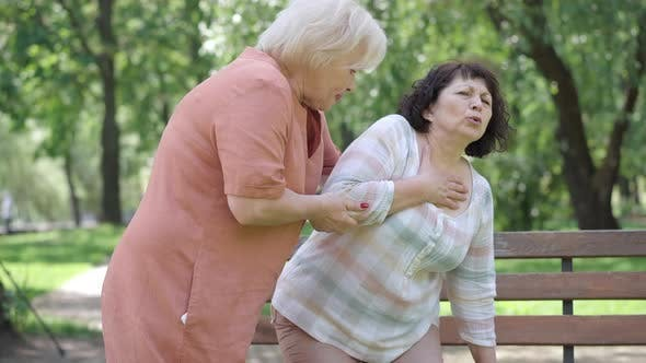 Thumbnail for Senior Caucasian Woman Walking Friend with Heart Attack To Bench in Summer Park. Worried Female