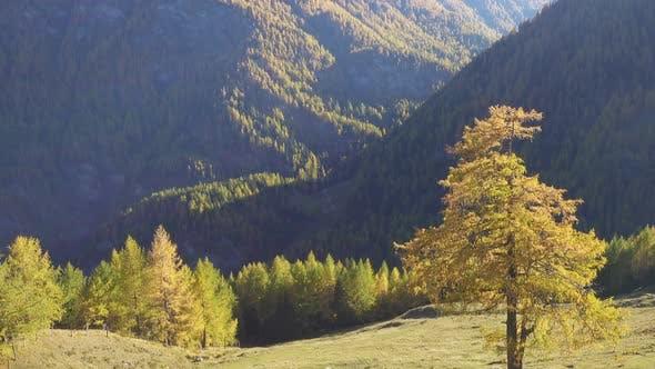 Thumbnail for Beautiful Autumn European Alps 2