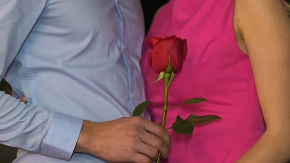 Cover Image for Man and Woman Standing Close to Each Other, Man Holding Red Rose, Dating, Love