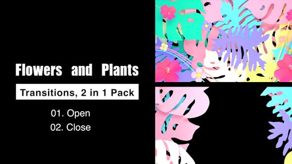 Thumbnail for Flowers And Plants Transitions Pack