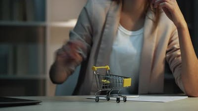 Internet Shopping Delivery Online Order