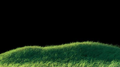 Blows Grass Loop