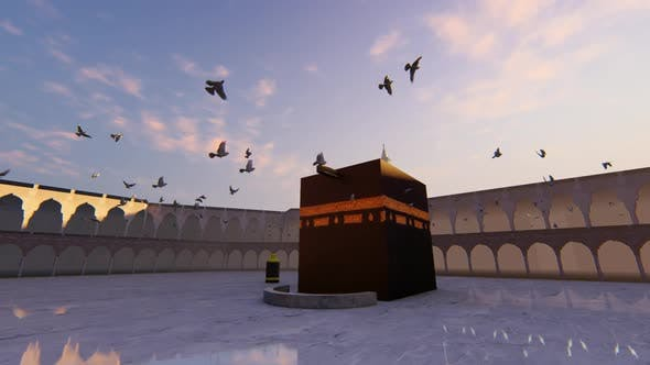 Thumbnail for Swallow birds circulating the Kaaba