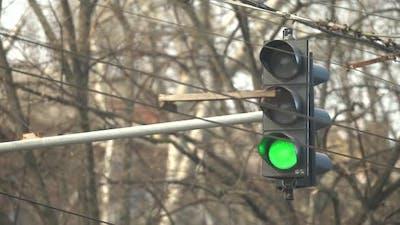 Traffic Light on the Road Regulates Traffic