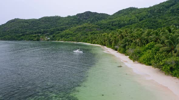 Thumbnail for Aerial View of Tropical Beaches with Coconut Palm Trees at Anse Forbans, on Mahe Island, Seychelles