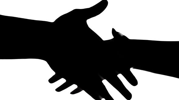 Cover Image for Shaking Hands Of Two People