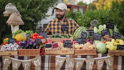 Portrait of Farmer Selling Groceries at Farmers Market Counter