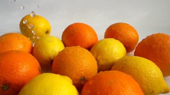 Thumbnail for Juicy Oranges and Lemons 6