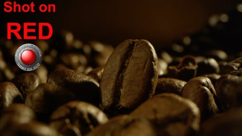 Coffee Beans in Piles