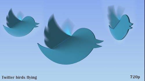 Twitter Birds Flying