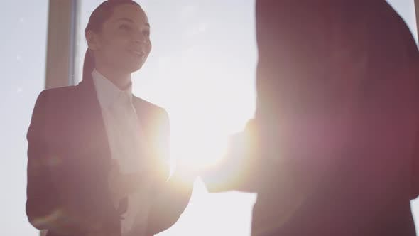 Thumbnail for Slowmo of Happy Businesswoman Talking to Businessman