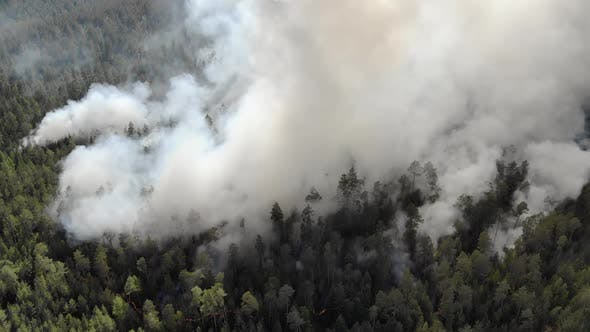 Thumbnail for Aerial Footage Fire and Smoke Siberia Russia
