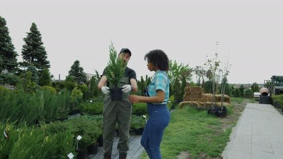 Gardeners Walking in Nursery Garden