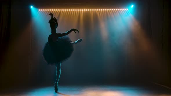 Silhouette of a Graceful Ballerina in a Chic Image of a Black Swan. Dancing of Elements Classical