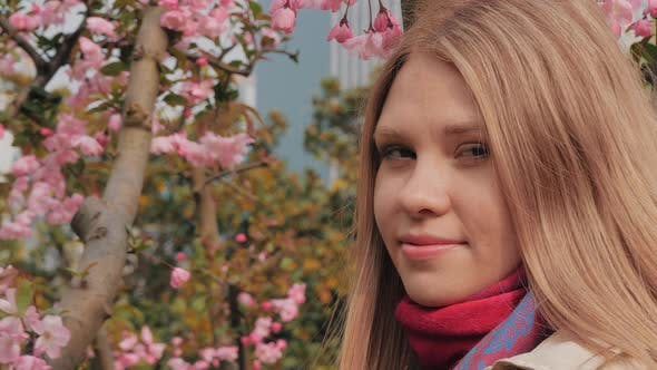 Thumbnail for Close-up Shot of Attractive Girl with Pink Blossoms on the Background, Woman Enjoys Smell of