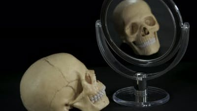 Reflection of Death in the Mirror