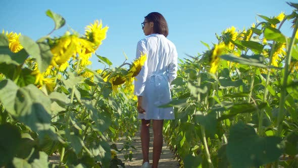 Female Agronomist Walking Along Cultivated Field