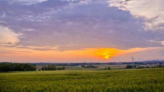 Thumbnail for Summer Sunset Over Fields