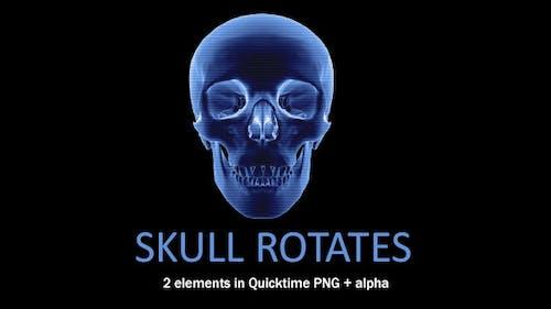 Skull Rotates