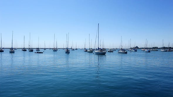 Many Sail Boats and Masts in a Marina 1