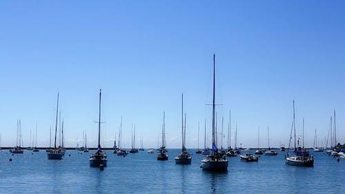 Many Sail Boats and Masts in a Marina 2