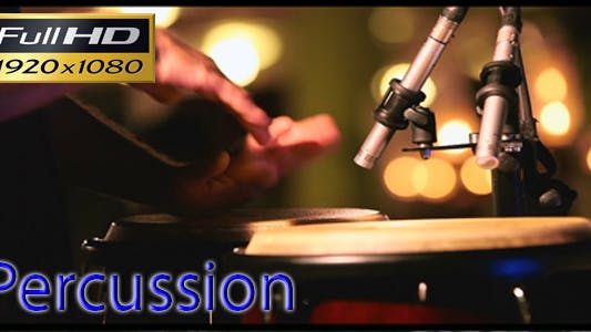 Cover Image for Percussion Performer