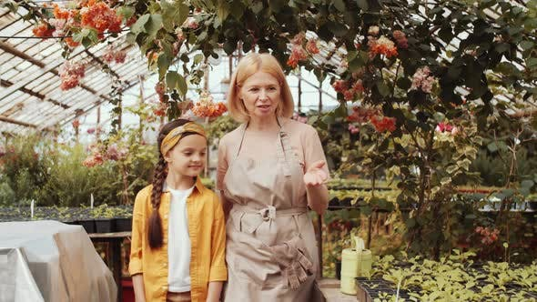 Thumbnail for Senior Woman Telling about Farming to Little Granddaughter in Greenhouse