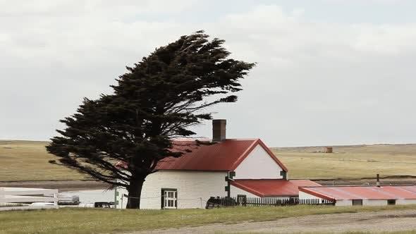 Thumbnail for Houses of Goose Green, Falkland Islands (Malvinas).