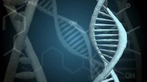 Dna Rotations with the Advent of Chemical Formulas