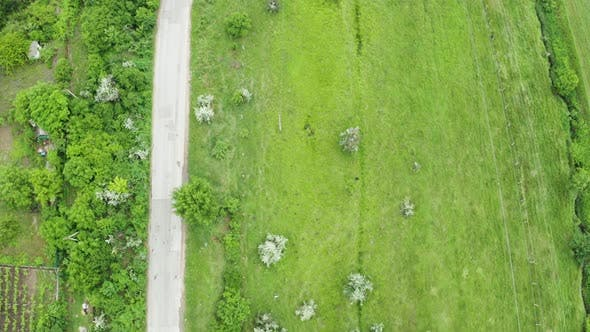Thumbnail for Top Down Aerial Shot of Rural Road with Cars Driving on It