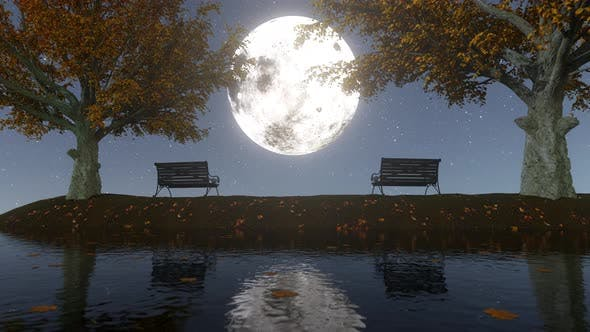 Thumbnail for Autumn Moonlight