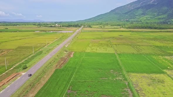 Thumbnail for Drone Follows Car Driving Along Road Among Rice Fields