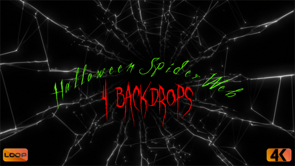 Thumbnail for Halloween Spider Web  B