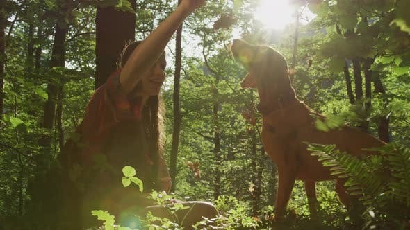 Thumbnail for Girl and dog playing with dried leaves