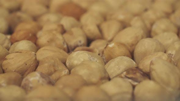 Thumbnail for Hazelnuts