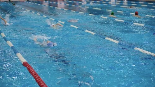 Jeux olympiques de natation
