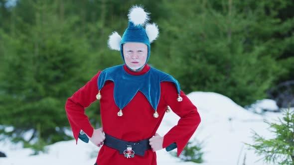 Thumbnail for Serious Christmas elf