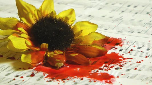 Thumbnail for Blood Drops on Yellow Flower and Music Sheets