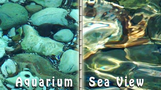 Thumbnail for Aquarium Sea View