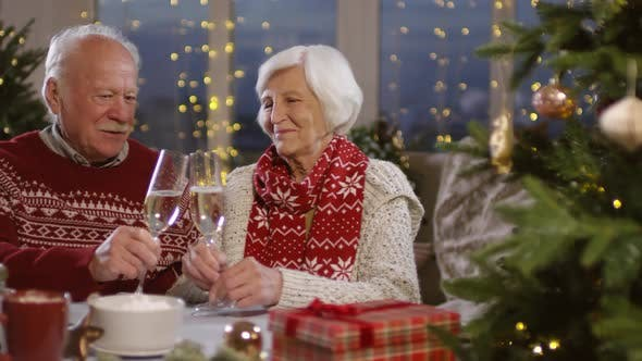 Thumbnail for Elderly Couple Celebrating Christmas
