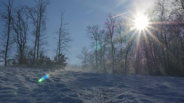Bäume auf Kraljevica Park Hügel schneit unter 4K 2160p UHD Filmmaterial - Hügel und Wald in der Nähe der Stadt Zaj