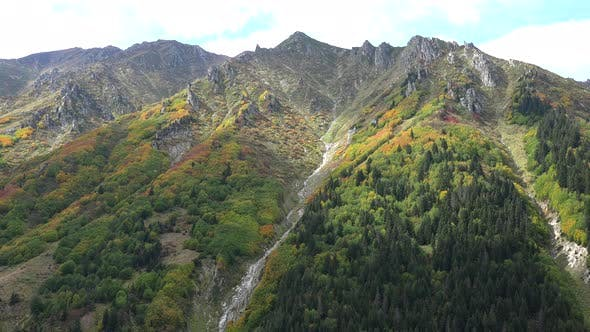 Thumbnail for Colorful Mountain Plants in Approaching Autumn Season Colors